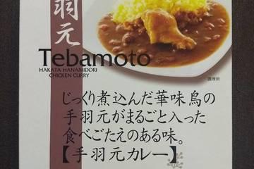 トリゼンフーズ 博多華味鳥 手羽元カレー