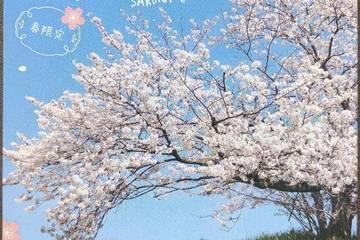調味商事 春は桜に熱々カレー。  春限定 さくらカレー