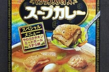 明治 マジックスパイス スープカレー