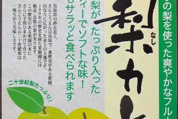 佐々木山光園 鳥取県名産二十世紀梨カレー
