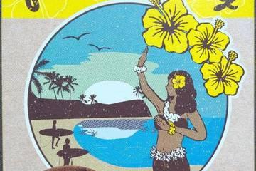 ハチ食品 魅惑のハワイアンカレー ガーリックシュリンプカレー