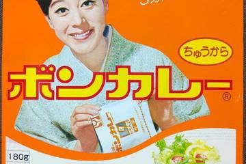 大塚食品 ボンカレー ちゅうから