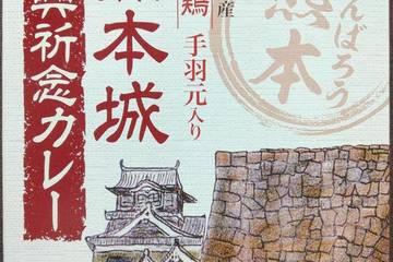 イケダ食品 熊本県産赤鶏手羽元入り 熊本城復興祈念カレー