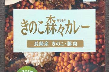 豊味館 食の来航長崎豊味館 きのこ森々カレー
