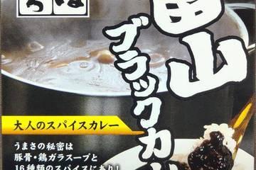 天高く 麺家いろは 富山ブラックカレー 大人のスパイスカレー